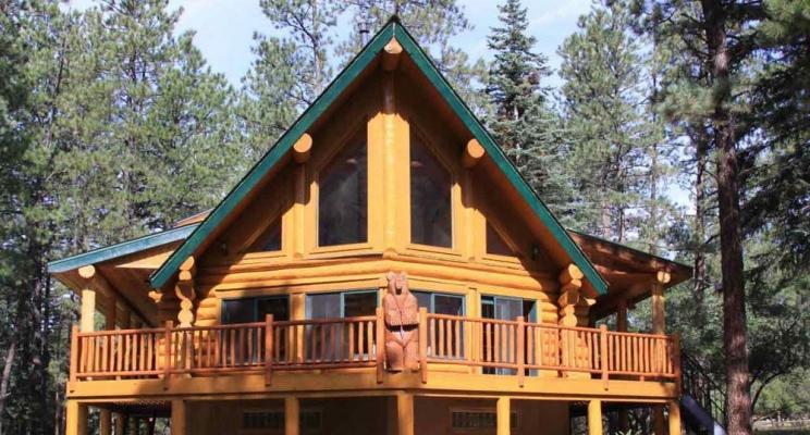Максимальная защита деревянного дома с пропиткой